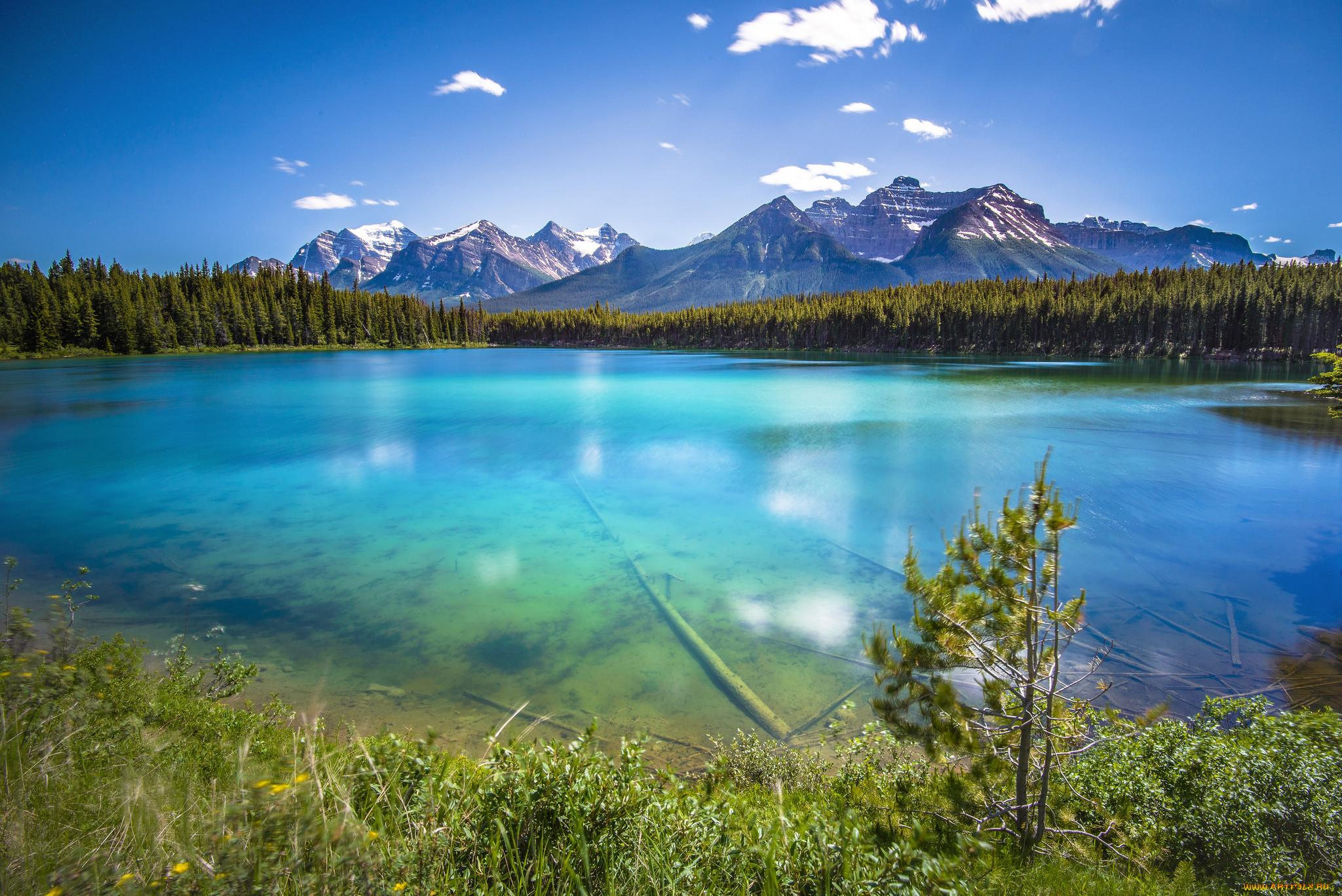 может прозрачные реки и озера фото бессмысленных невыразительных геометрических